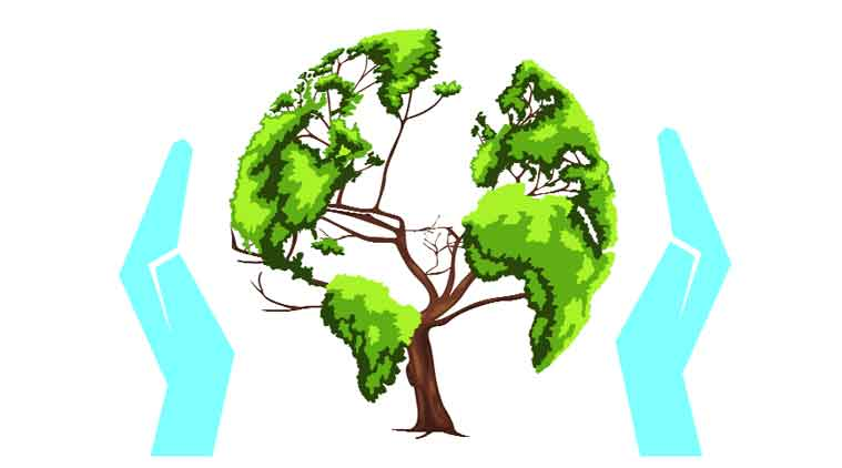 Green Day clipart afforestation Indian change The of forests