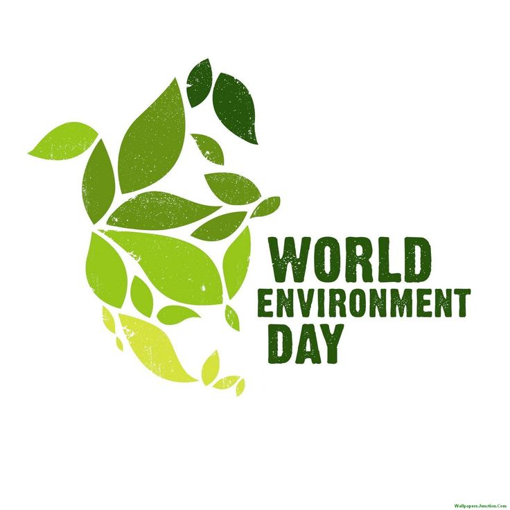 Green Day clipart environmental policy Best Environment day Pinterest about