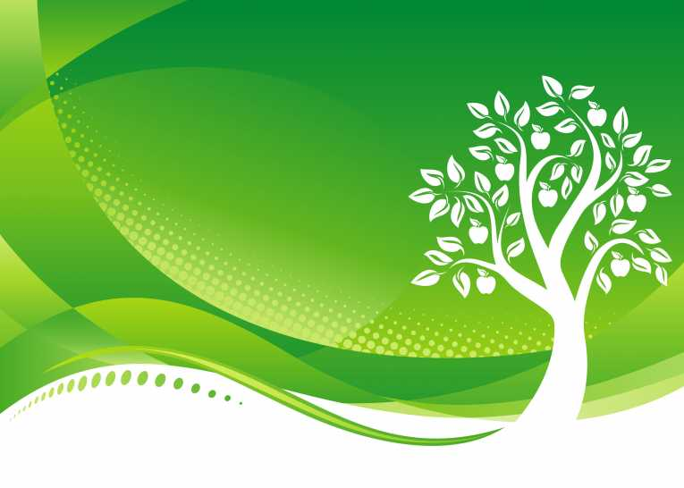 Green Day clipart environmental protection Environment Department gets ready Protection