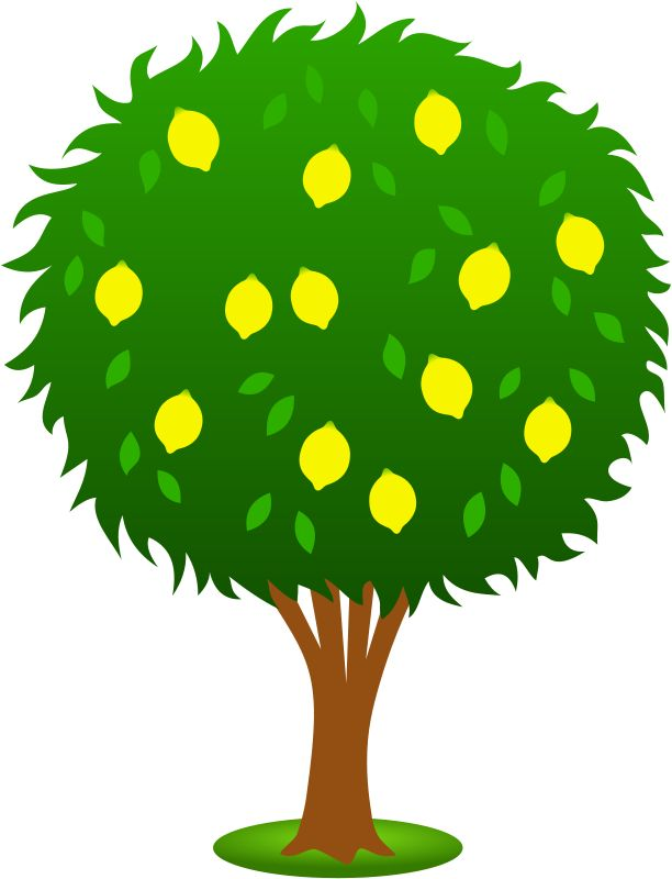 Green Day clipart plant Images on Cute Art learn