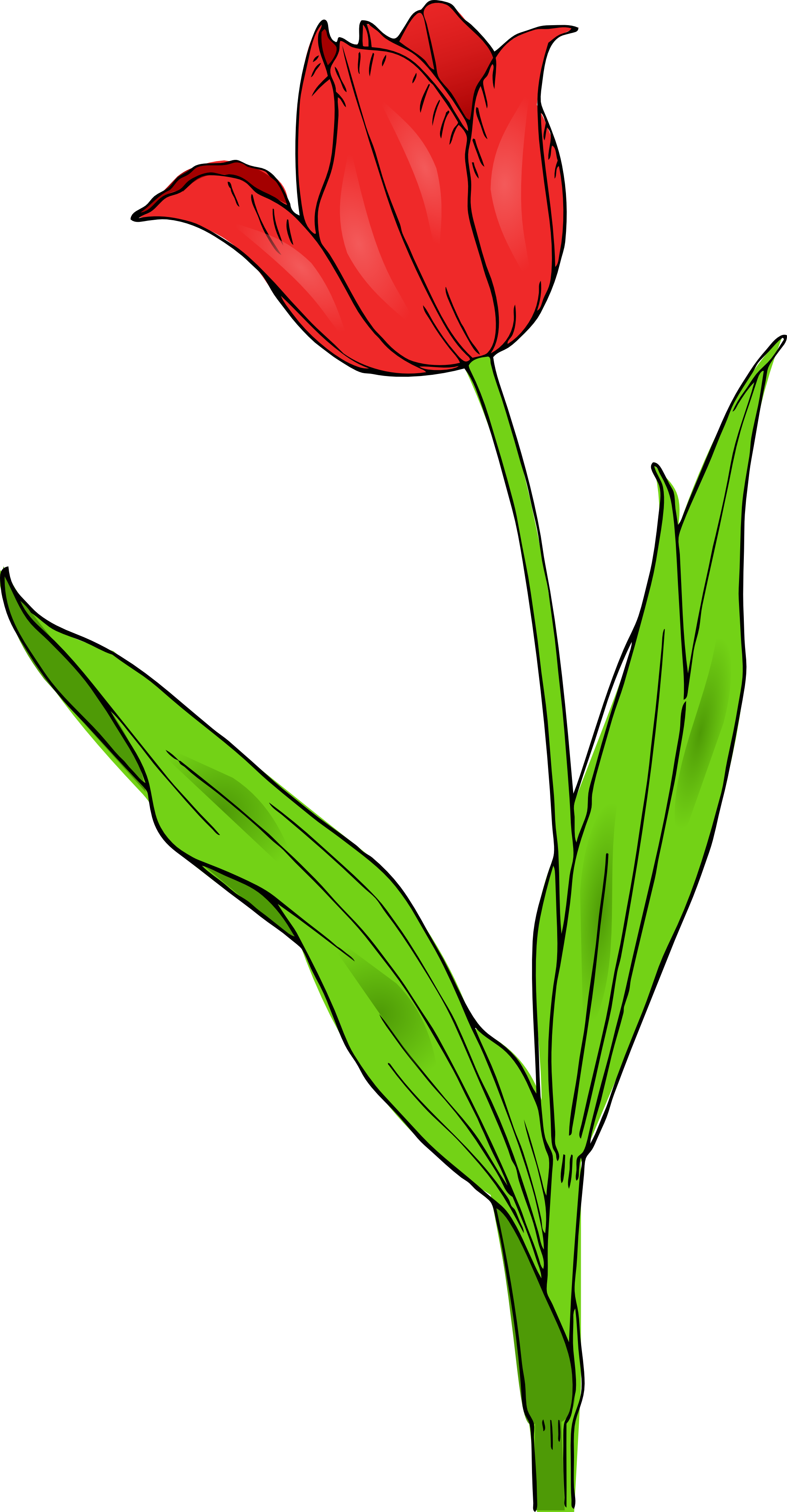 Green Day clipart spring For Of  Mothers on