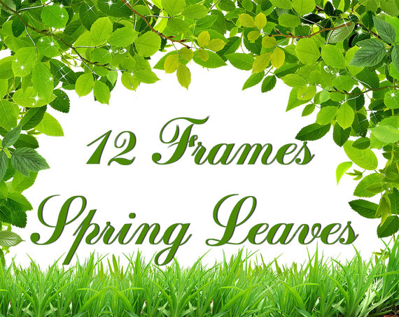 Green Day clipart spring Frames Digital and Digital from