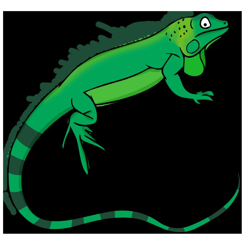 Reptile clipart #10