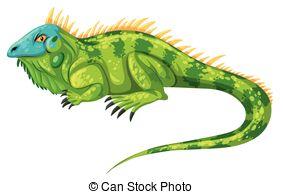 Green Iguana clipart Green iguana crawling Green illustration