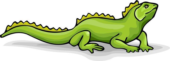 Iguana clipart 79 Top Iguana Clipart Free