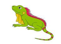 Reptile clipart iguana #5