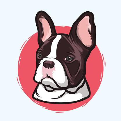 Grey clipart bulldog #11