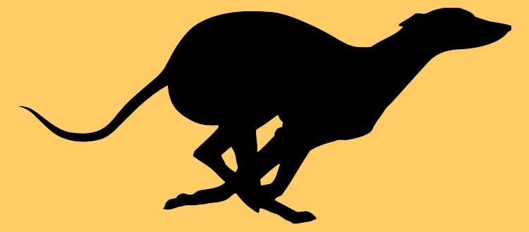 Greyhound clipart Clip decal Running Greyhound Clip
