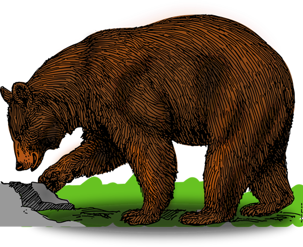 Larger clipart grizzly bear Clip bear free bear free