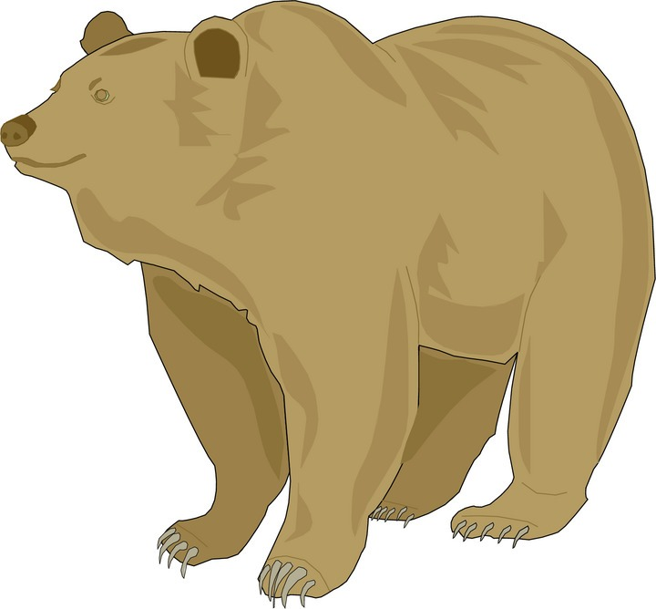 Furry clipart grizzly bear #10