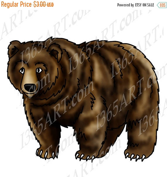 Grizzly Bear clipart brown color Grizzly bear 50% wildlife Grizzly
