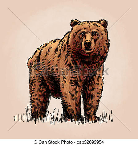 Grizzly Bear clipart brown color Engrave Clipart  bear color