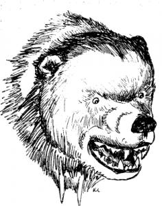 Grizzly Bear clipart fierce Art Bear Download Fierce collection