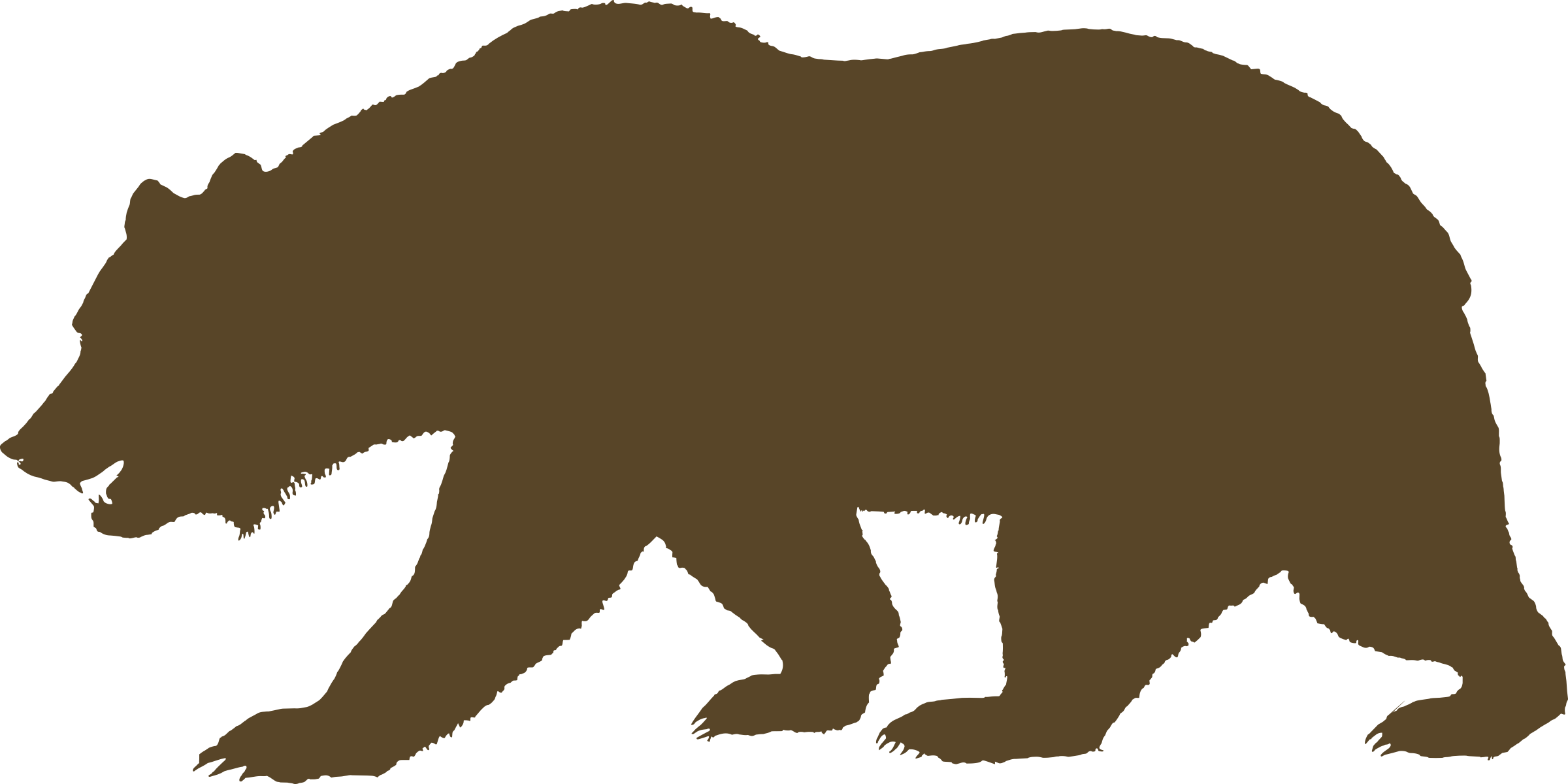 Grizzly Bear clipart outline #14