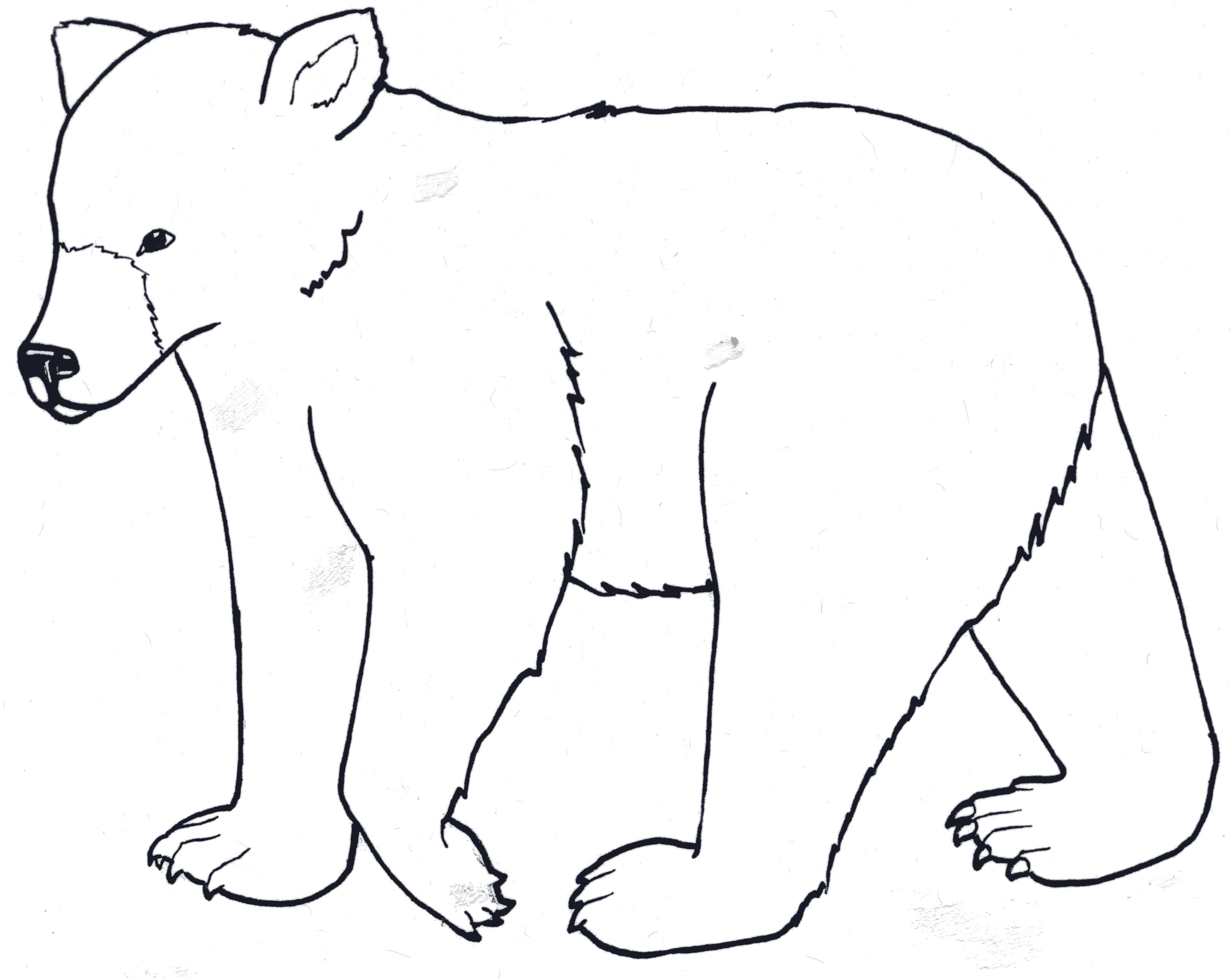 Grizzly Bear clipart outline #15