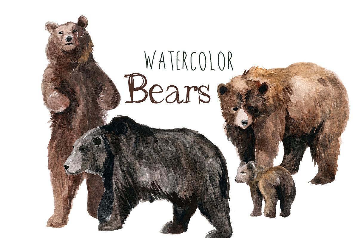 Black Bear clipart woodland Clip Forest Bears  Bear