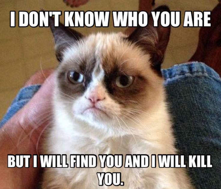 Grumpy Cat clipart animated #8