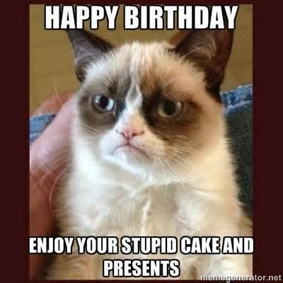 Grumpy Cat clipart birthday saying Offers birthday Cat Grumpy birthday