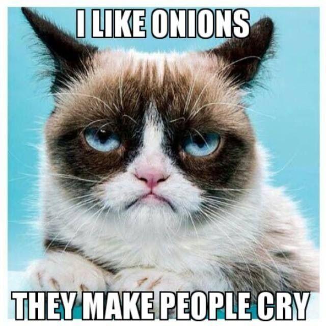 Grumpy Cat clipart birthday saying #7