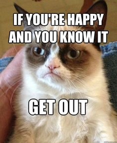 Grumpy Cat clipart birthday saying And Sayings Quotes Grumpy GRUMPY