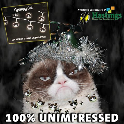 Grumpy Cat clipart impressed #9