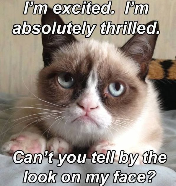 Grumpy Cat clipart impressed #7
