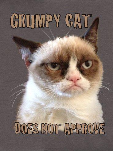 Grumpy Cat clipart not #10