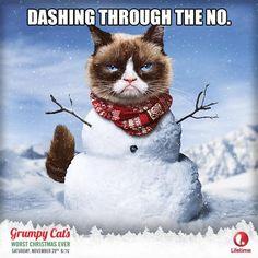 Grumpy Cat clipart not #6