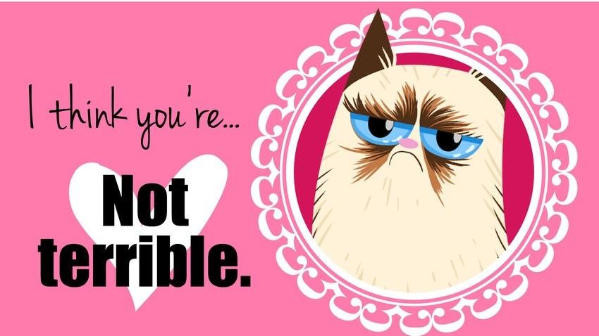Grumpy Cat clipart not #9