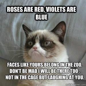 Grumpy Cat clipart not #15