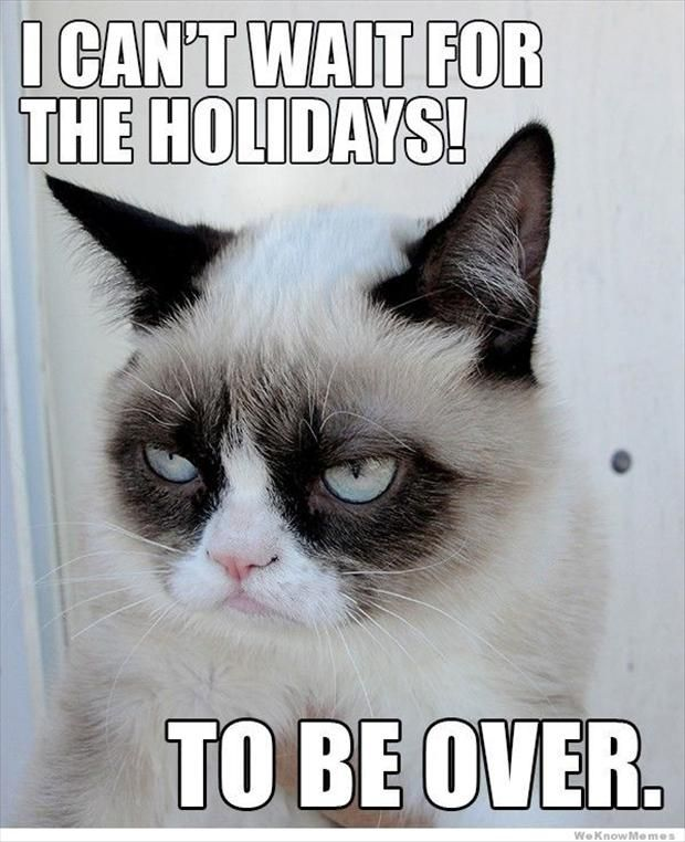 Grumpy Cat clipart sad kitty #12