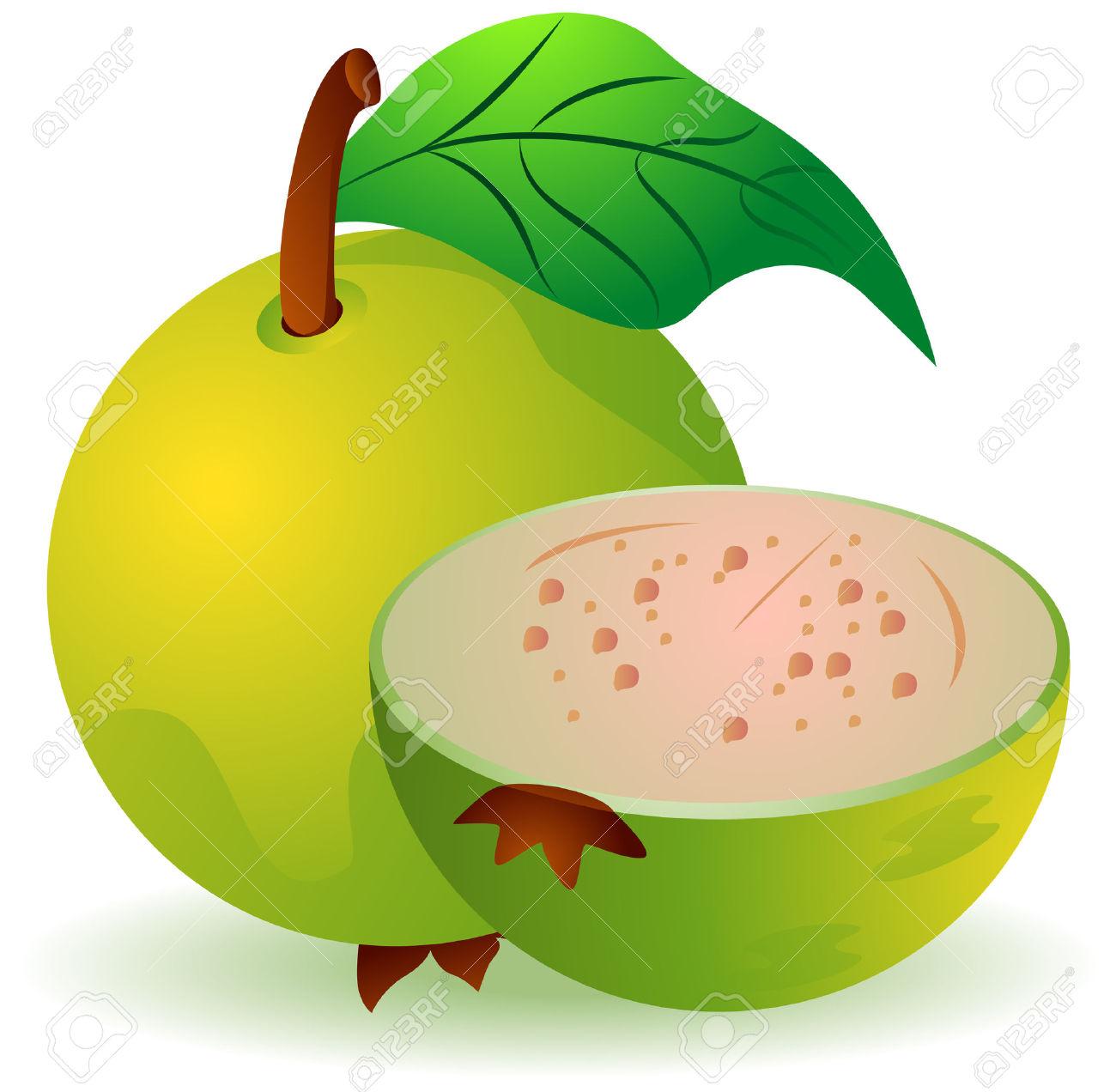 Guava clipart Com photo Guava NiceClipart 2