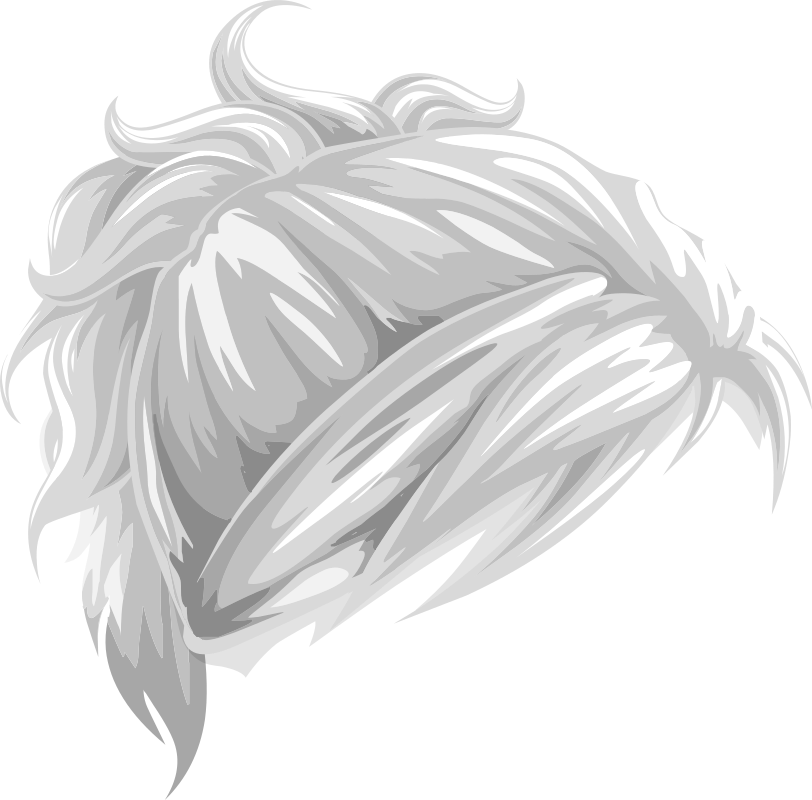 Hair clipart grey hair Tieback Ponytail Vanity Wavy MEDIUM