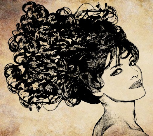 Hair clipart just hair A png 300dpi Just add