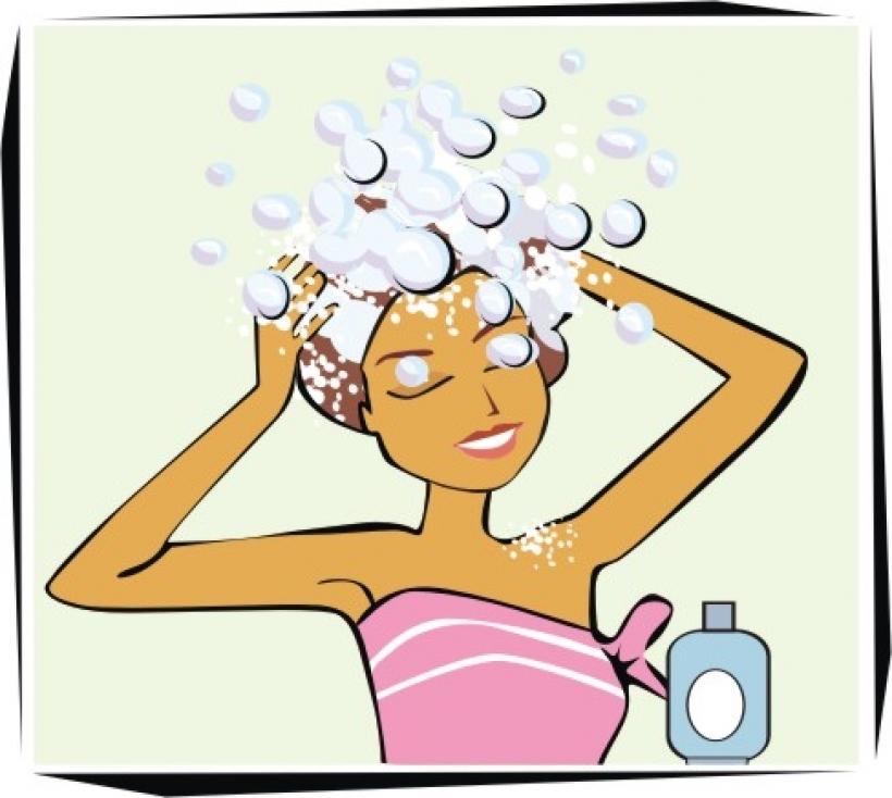 Hair clipart shampoo  437 images 488 clipart