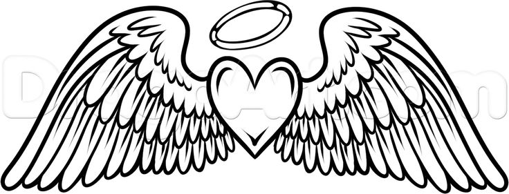 Wings clipart drawn Art Clipartion Best com #17784