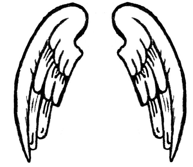 Wings clipart cartoon And best images Pix Pinterest