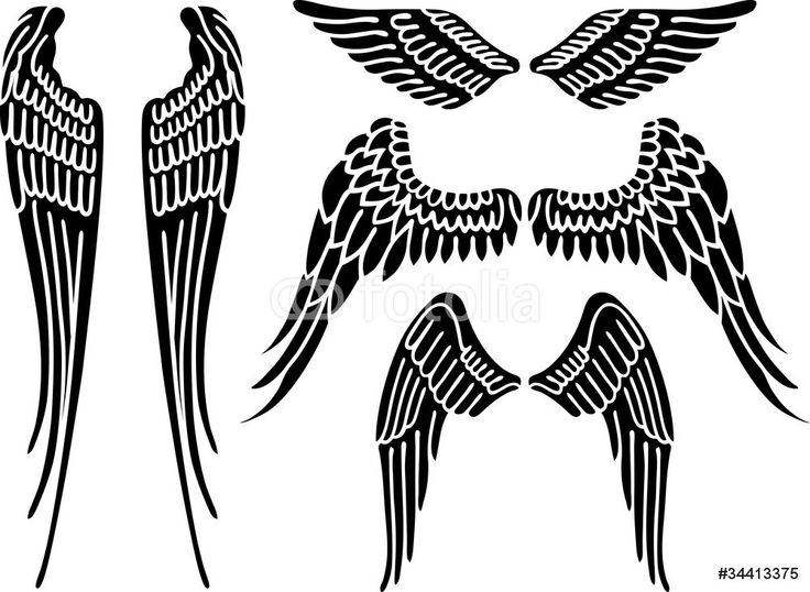 Halo clipart dove wings Good about on Graphics engelvleugels