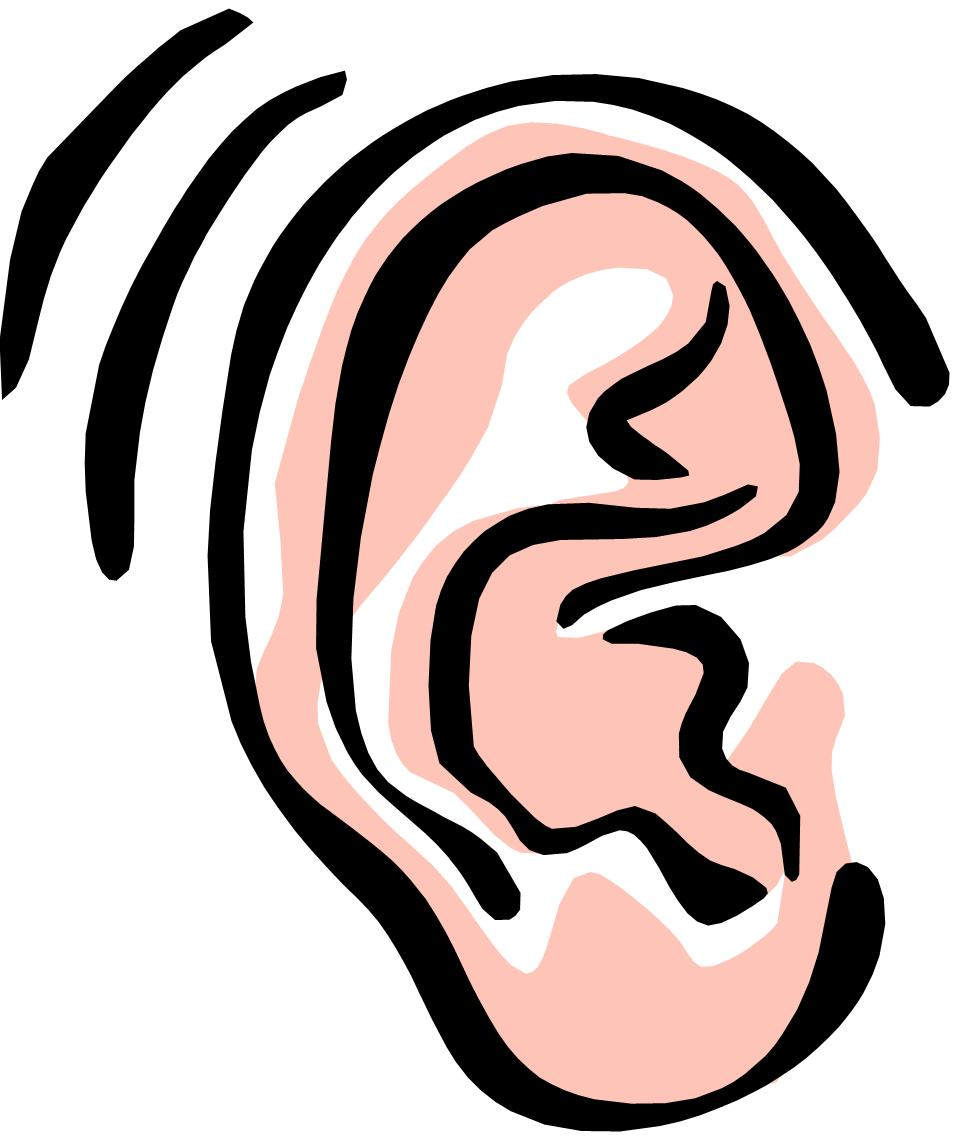 Pice clipart ear Clip SSI People Project ear