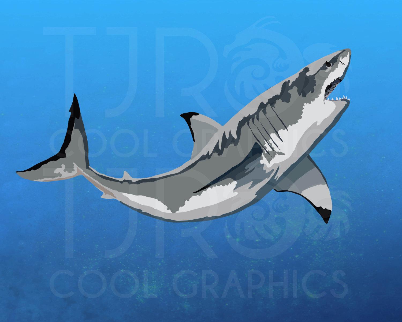 Hammerhead clipart great white shark Art file Realistic digital Printable
