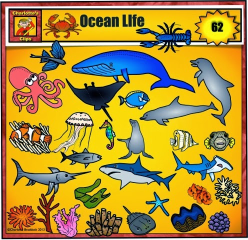 Hammerhead clipart ocean fish Charlotte's life Art Clips Clip