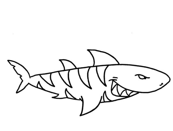 Hammerhead clipart tiger sharks Pages Hammerhead Shark Hammerhead #9