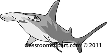 Hammerhead Shark clipart Shark Shark black clipart And