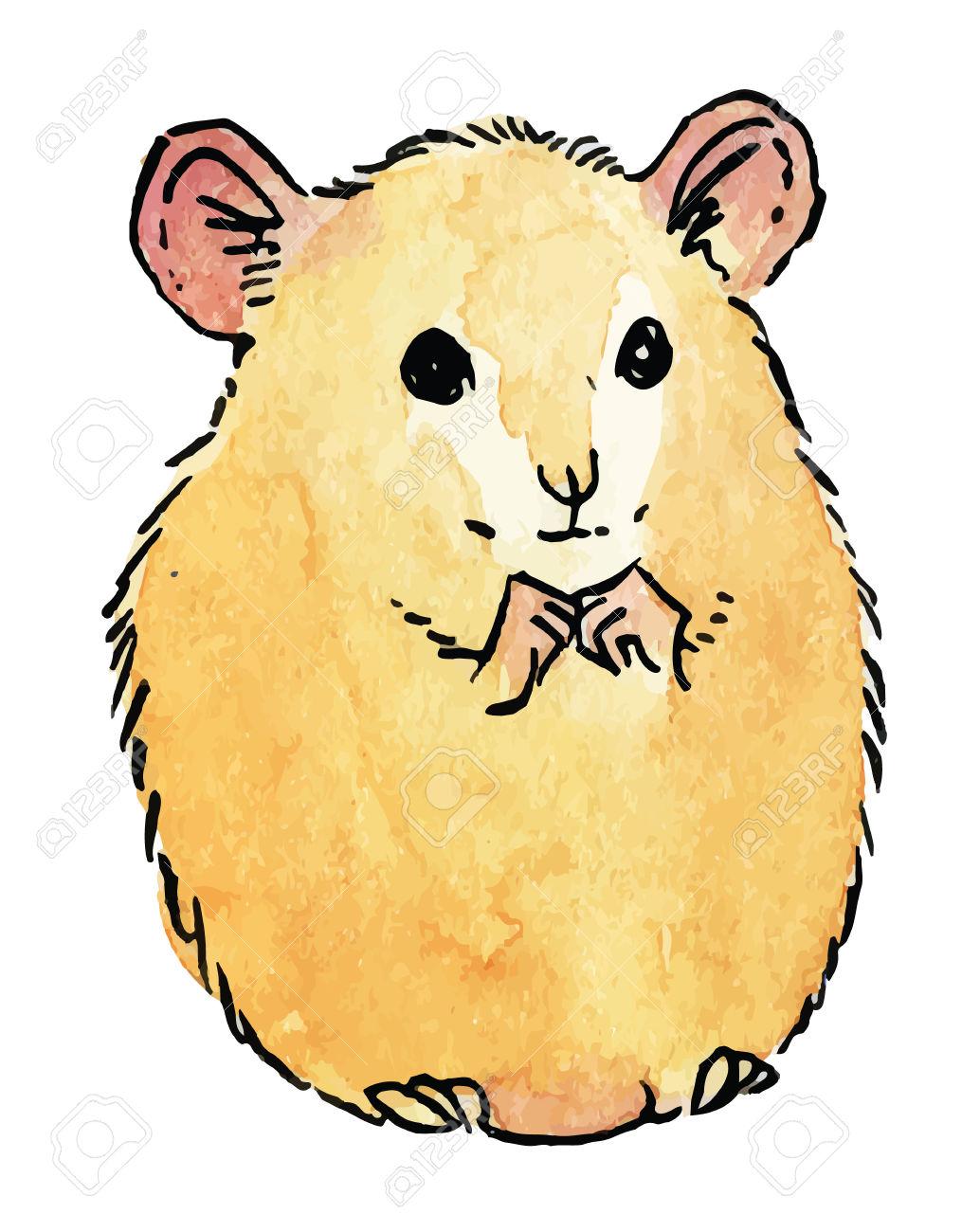 Hamster clipart Clipart hamster #4 Clipart hamster