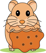 Hamster clipart Hamster Art Cliparts Hamster Clipart