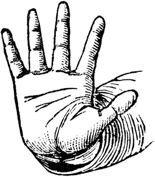Hand Gesture clipart hand stop Stop Hand photo Hand a