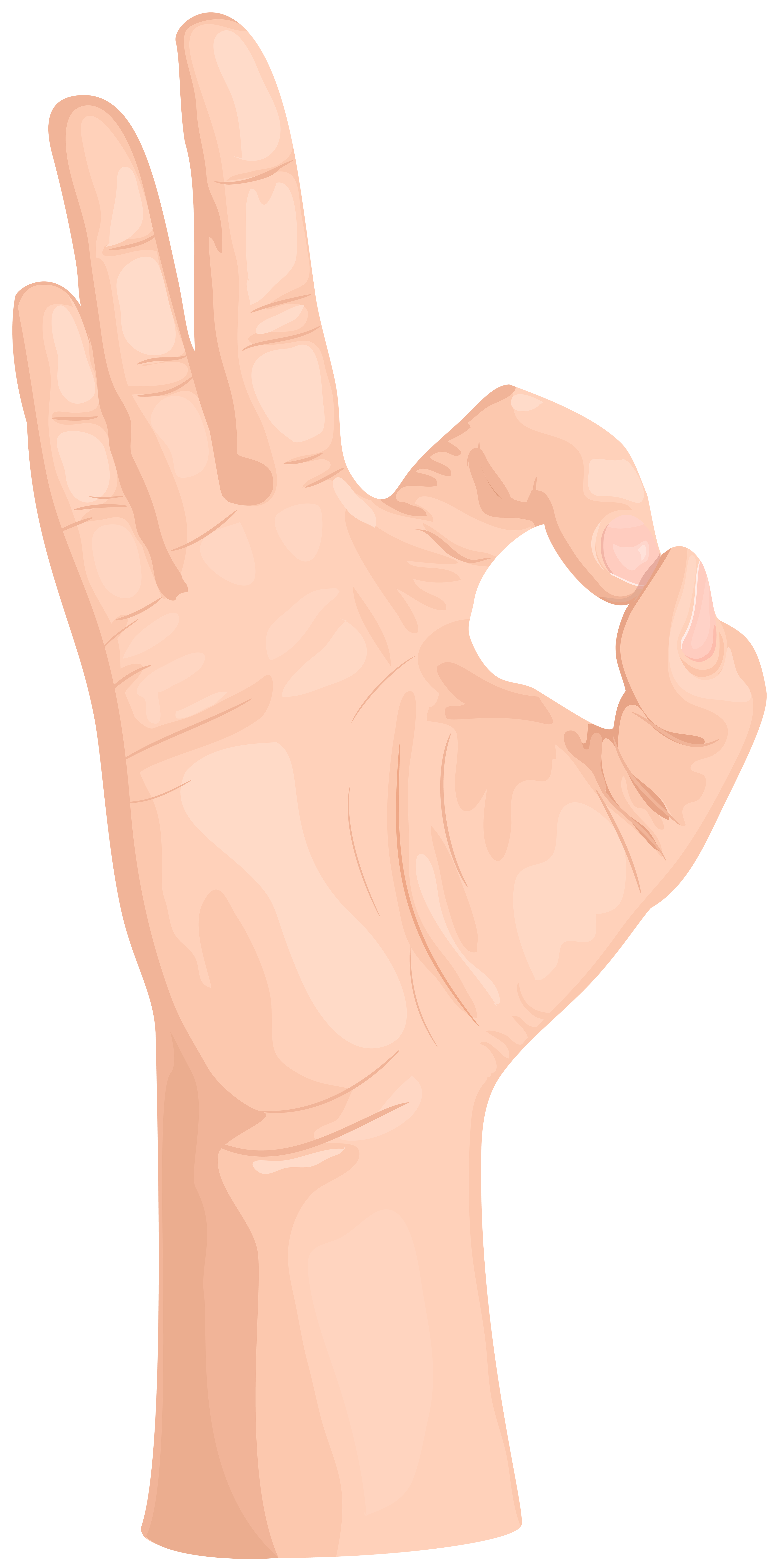Hand Gesture clipart ok hand OK OK Transparent PNG ·