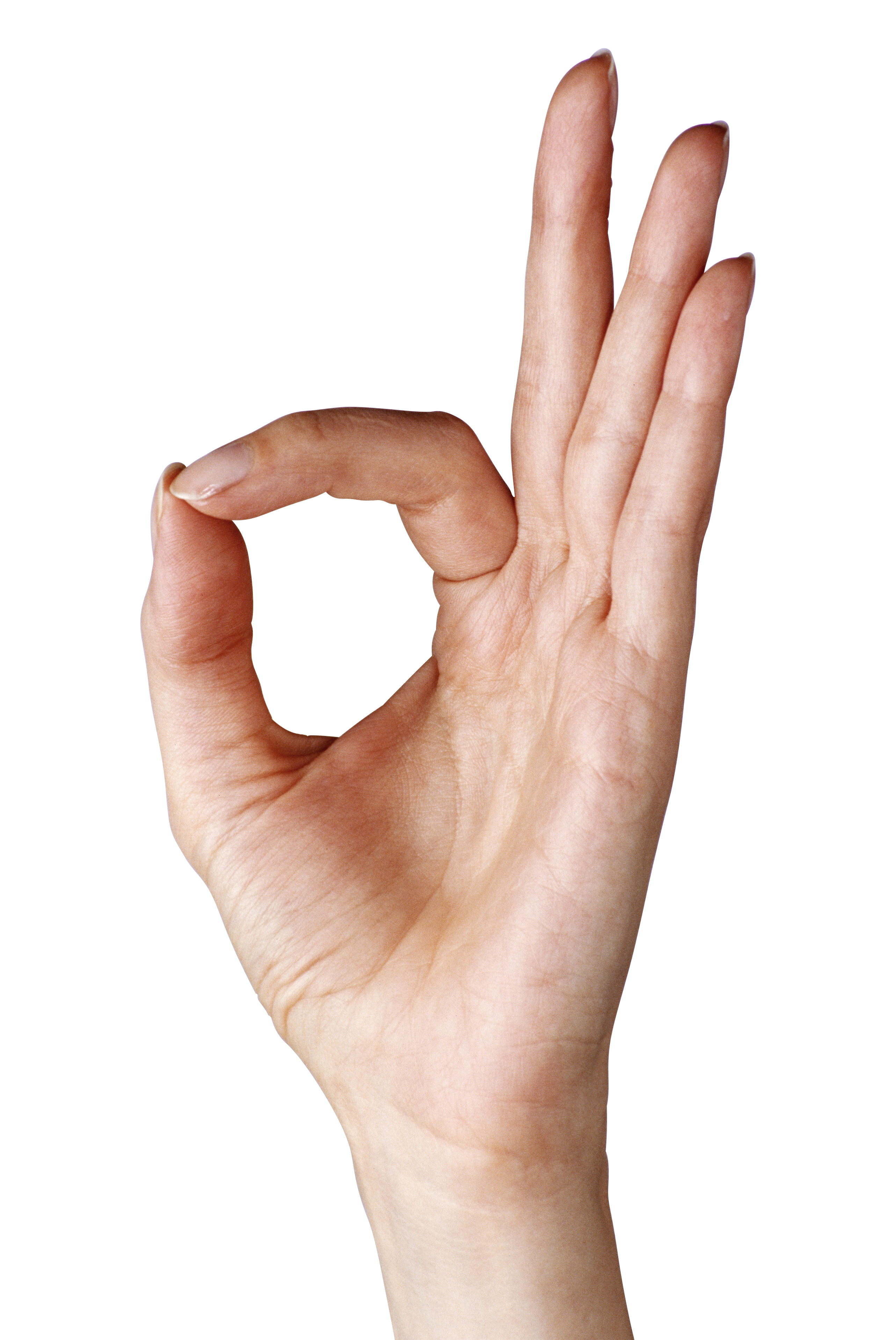 Hand Gesture clipart okay Gallery  Yopriceville Showing full