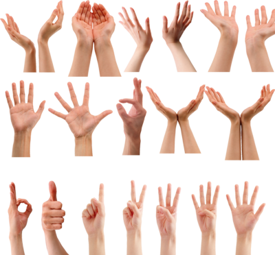 Hand Gesture clipart professional communication Story usually of gestures a