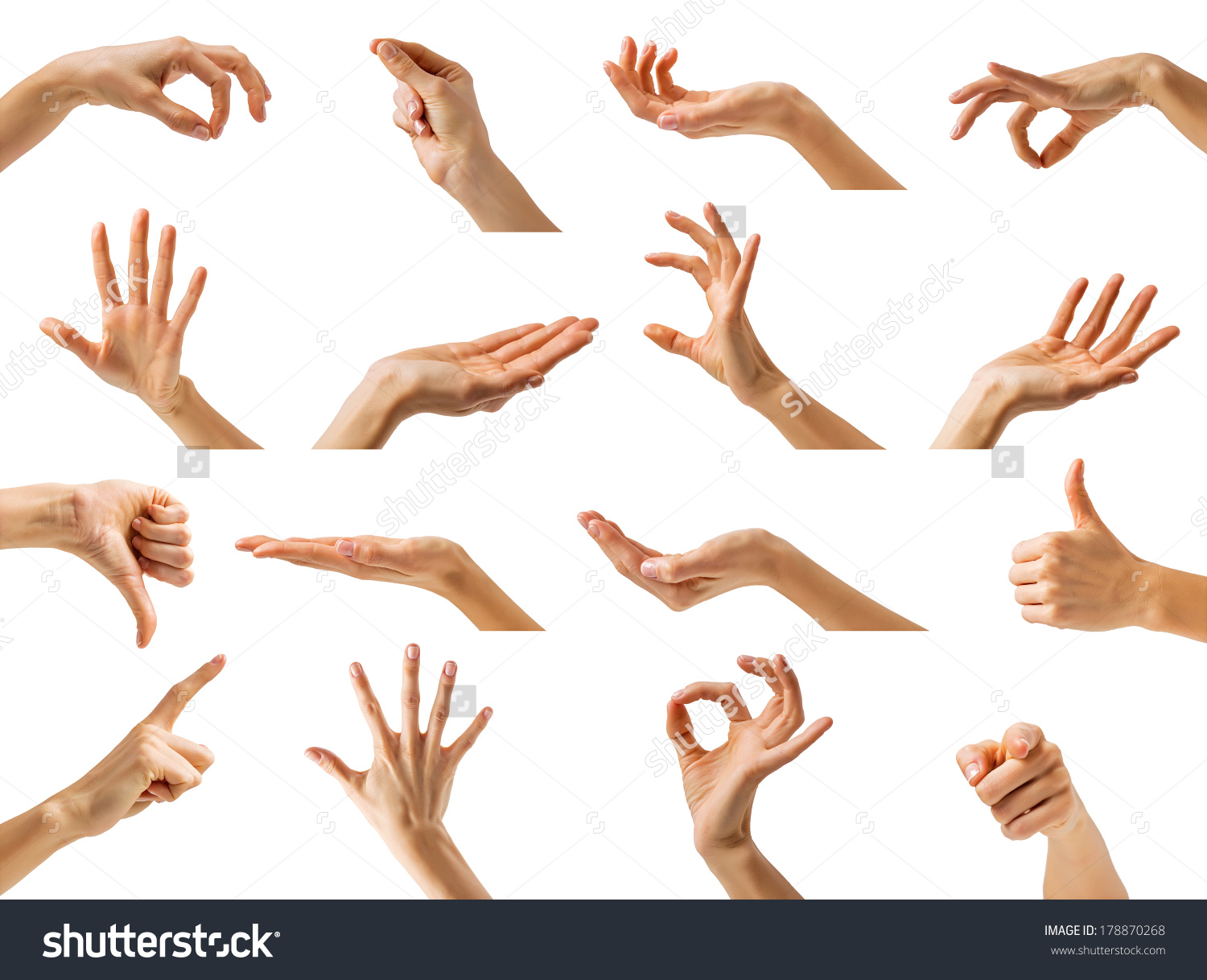 Hand Gesture clipart woman hand Stock different woman showing stock